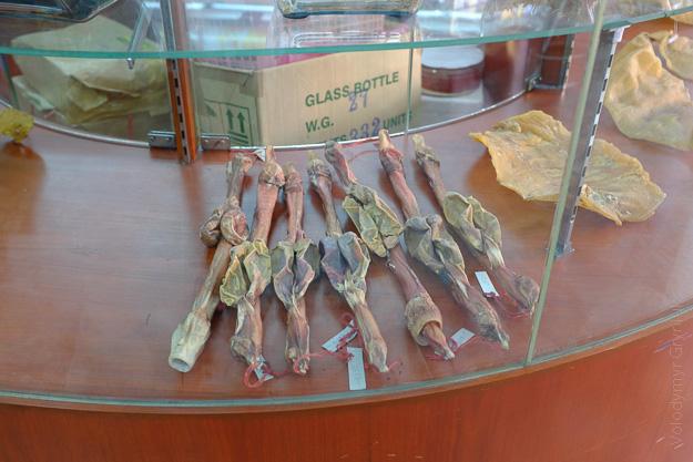 Таїланд Бангкок китайська аптека