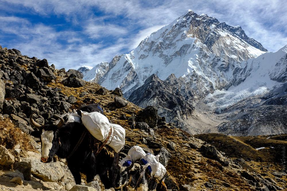 nepal_everest_base_camp-7
