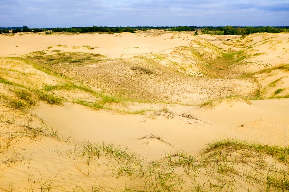 Олешківські піски херсонська область Україна