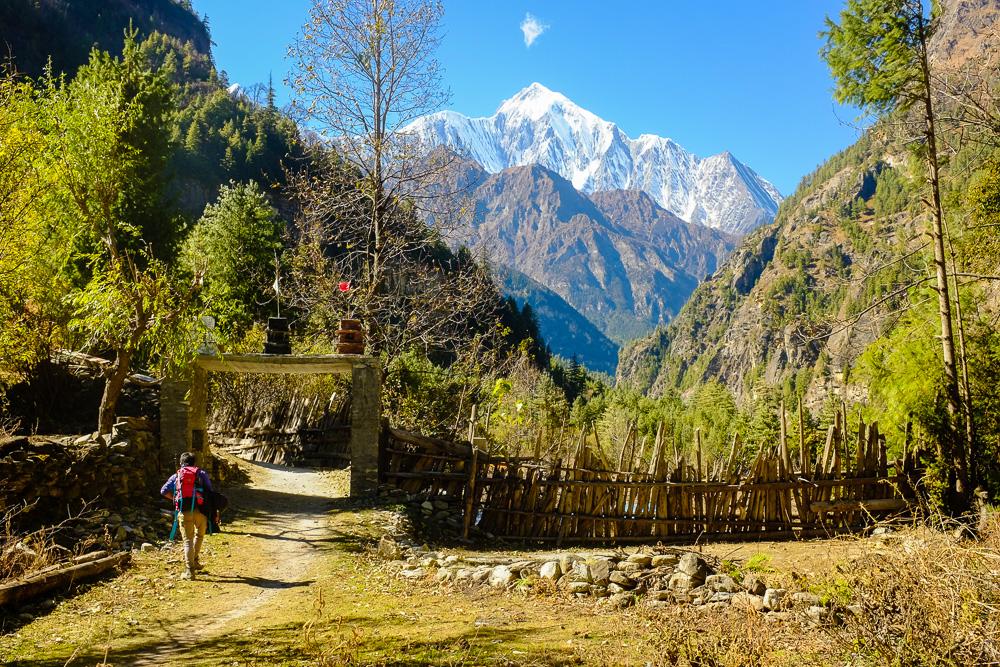Масив Аннапурна. Непал.