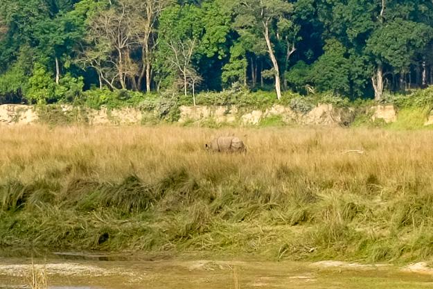 Національний парк Чітван