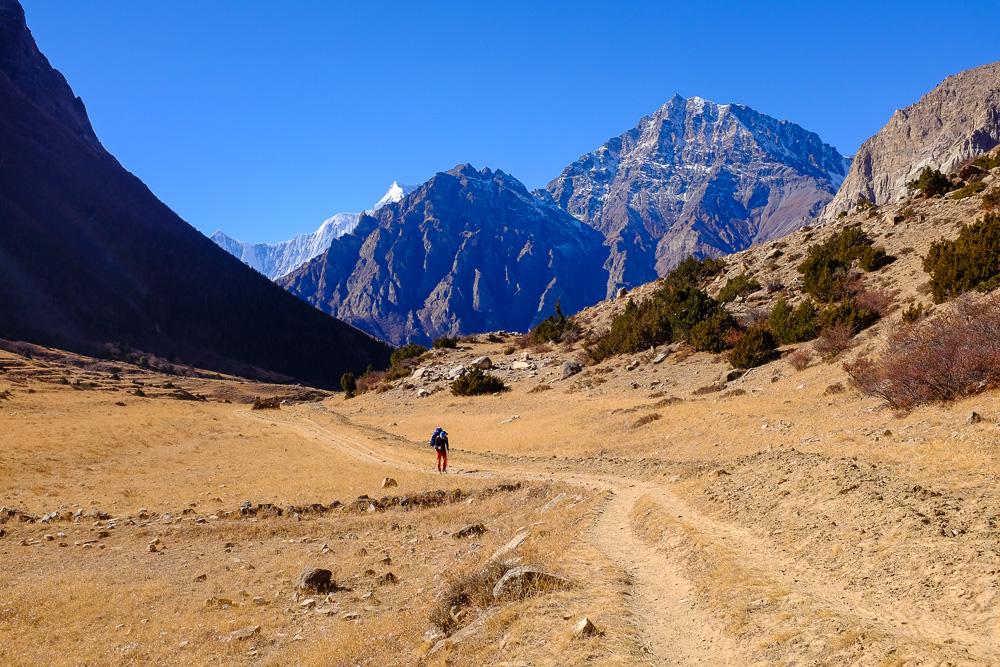 nepal_16_annapurna_naar_phu_kathmandu-10184