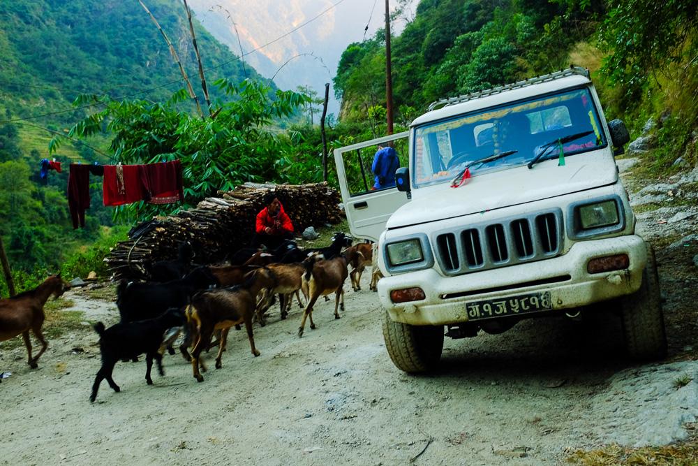 трек навколо Аннапурни. Непал.