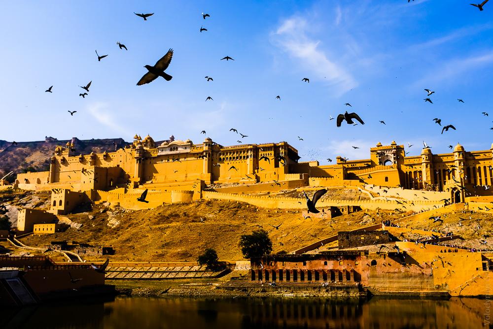 Індія звіт про поїздку
